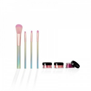 4 in 1 Hologram Brush Set